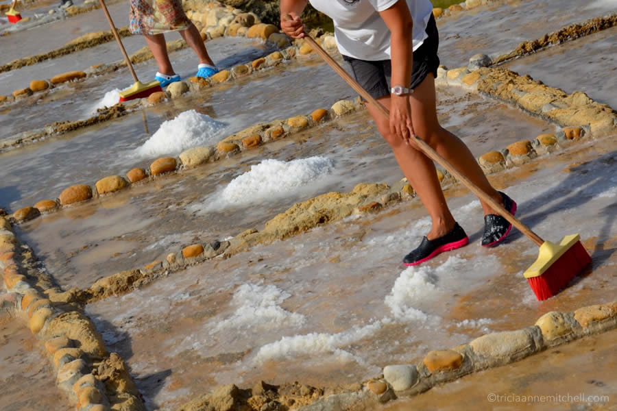 Raking Sea Salt Pans Gozo Malta Mediterranean