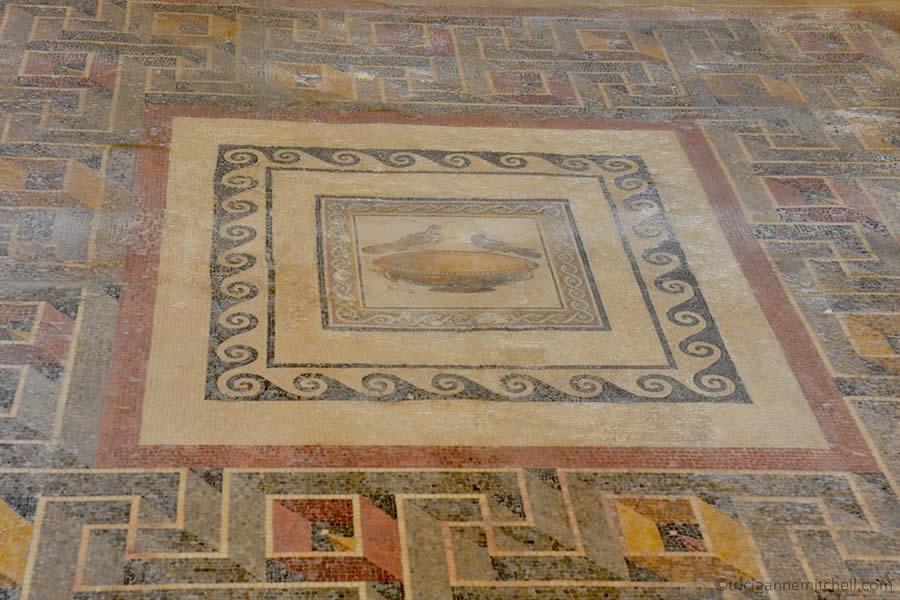 Roman Mosaics Malta Domus Romana Ruins