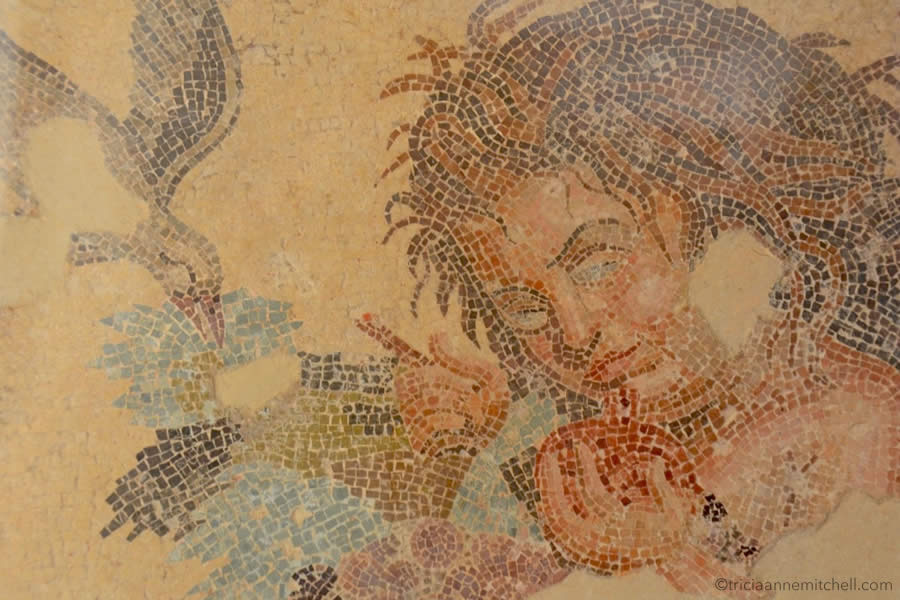 Roman Villa Malta Mosaic Floor