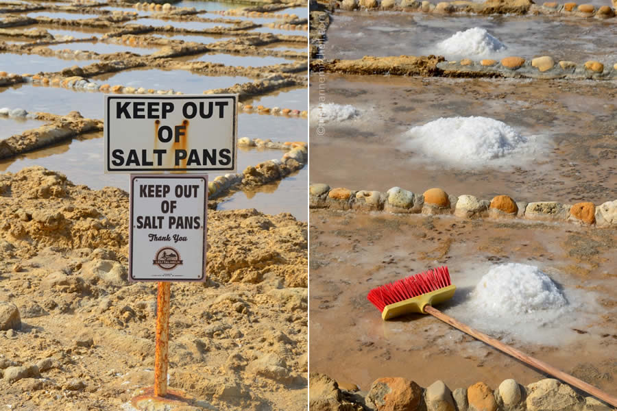 Salt Pans Salterns Gozo Malta
