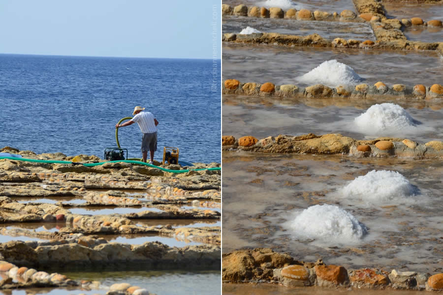 Sea Salt Harvesting Gozo Malta