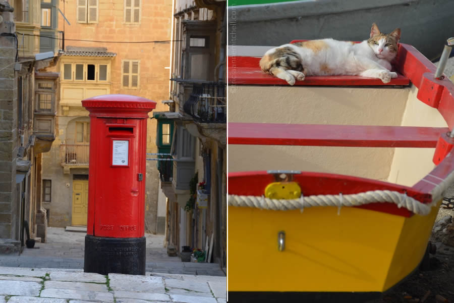 valletta-post-box-cat-malta