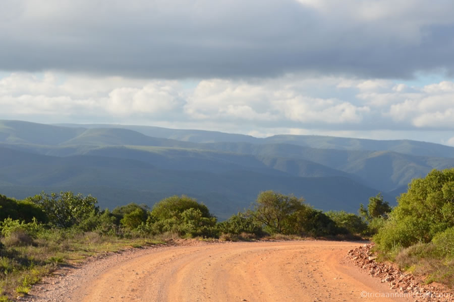 The view of a reddish dirt road in the Addo Elephant National Park. Green mountains are off in the distance.