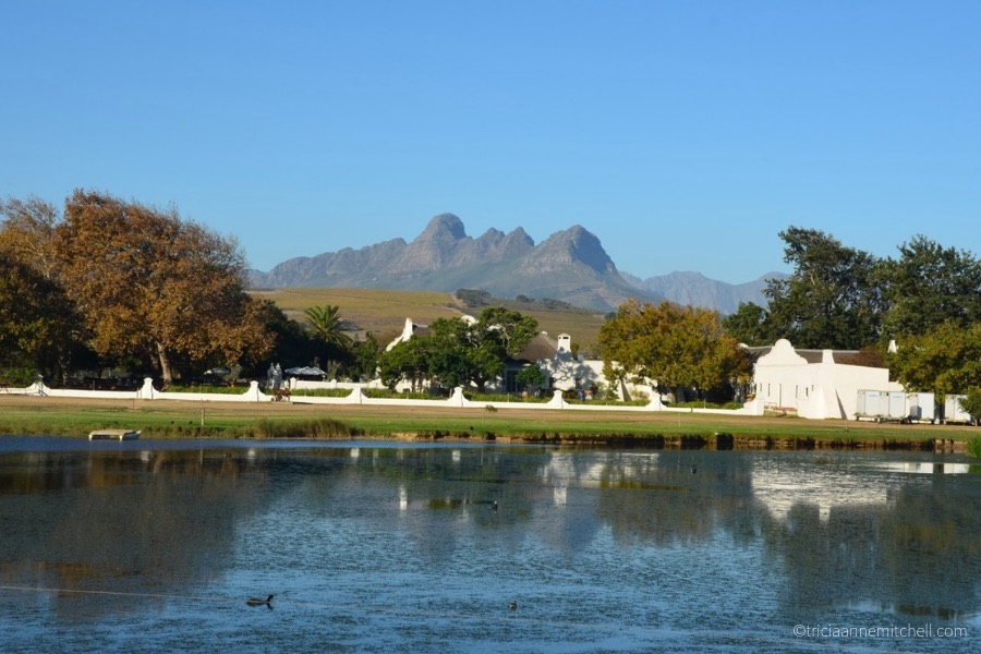 Dramatic mountains frame the autumn-hued landscape near the Vergenoegd Winery, near Cape Town, South AFrica.