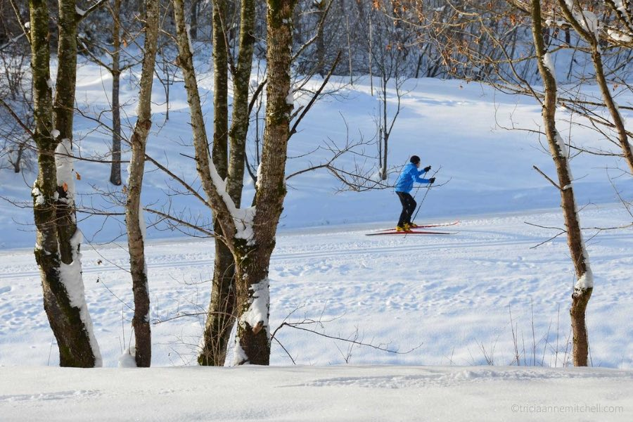 A cross country skier, dressed in blue and black, pushes through the snow. Barren trees are visible. The landscape is white.