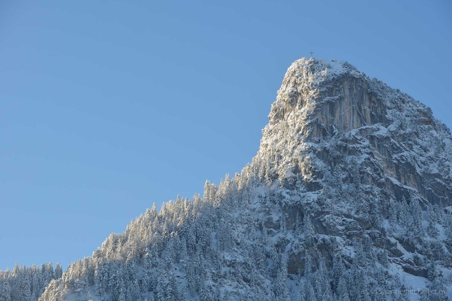 Snow covers evergreen trees growing on Mount Kofel in Oberammergau, Germany. The sky is blue.