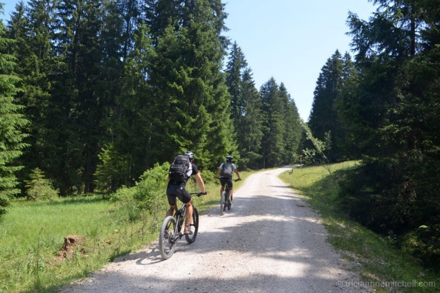 Two cyclists, dressed in black, ride up a gravel road on the Laber Mountain in Oberammergau, Germany. Each side of the road is framed with evergreen trees.
