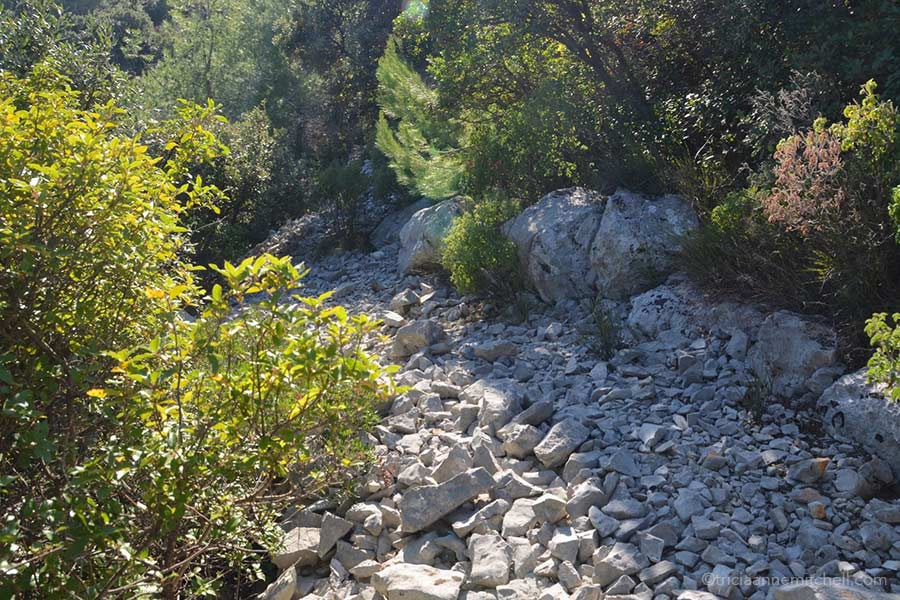 Croatia's rocky terrain on the island of Brac.