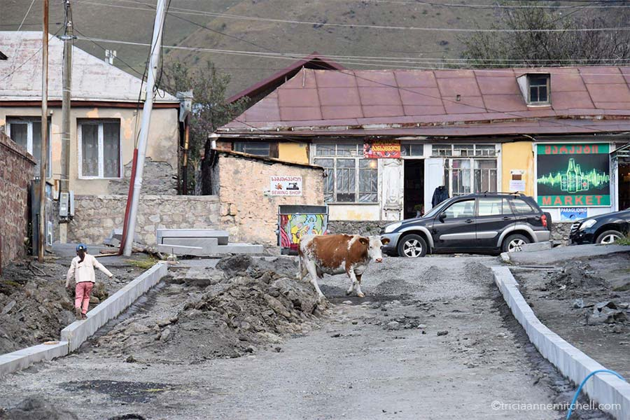 A brown and white cow walks on a street undergoing construction in Kazbegi, Georgia.