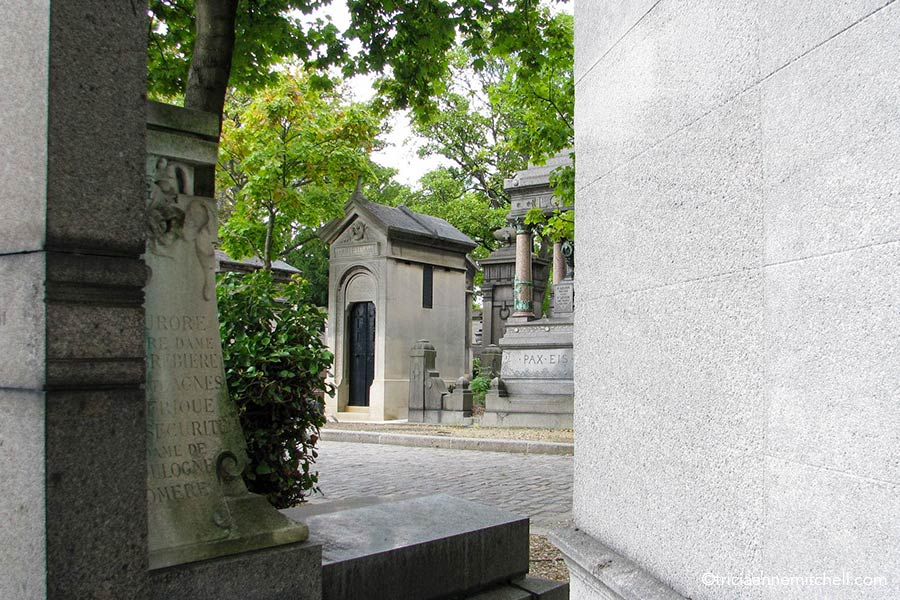 Grey mausoleums of varying sizes line a cemetery street with the green foliage of trees overhead.